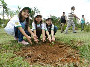 Estrada para a Cidadania no Dia do Meio Ambiente