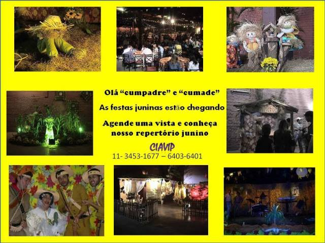 FestaJuninaCIAVIP2013