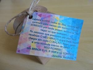 ???CIAVIP apresenta Criança Prudente, Adulto Consciente no aniversário da Janaína Jacobina. 29 de abril de 2014